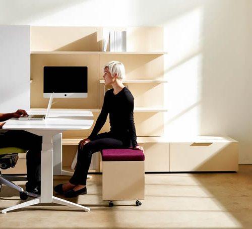Teknion Ergonomic Private Office